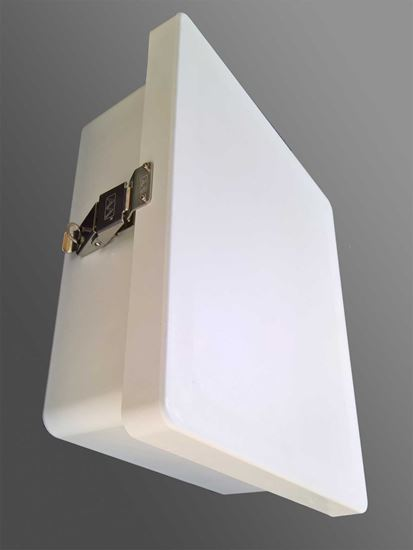Picture of AM-1X1NAI- EXTBOX Radiation Area Monitor (External Detector/Ruggedized Wall Mount)