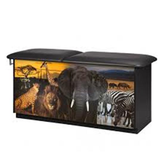 "Picture of 7940-1 - ""Safari"" Treatment Table-No Adj Back Flat Top"