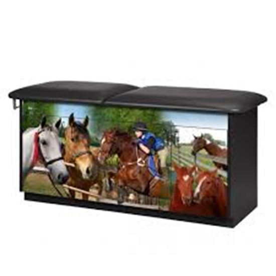 Picture of 7947-1 - Equestrian Treatment Table-Flat Top