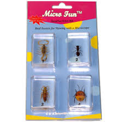 Picture of MAS-B3 - 4 pcs Bug set