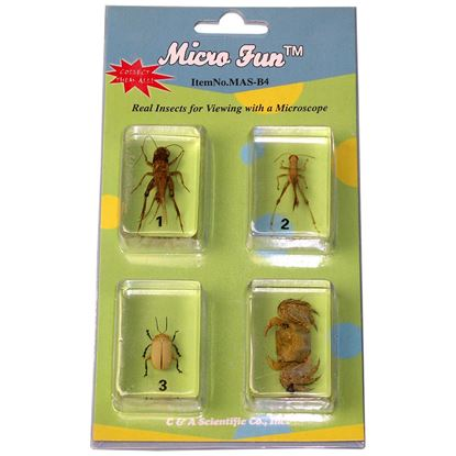 Picture of MAS-B4 - 4 pcs Bug set
