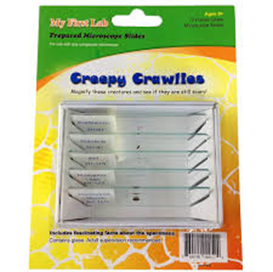 Picture of PS52 - Creepy Crawlies 5pc Slide Set
