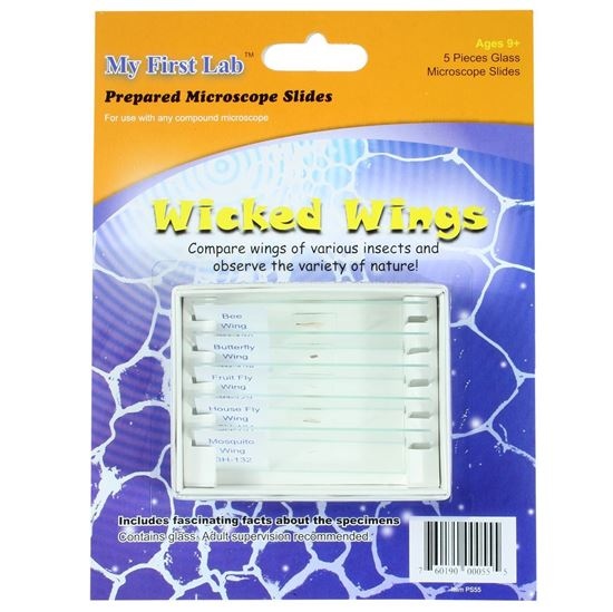 Picture of PS55 - Wicked Wings 5pc Slide Set