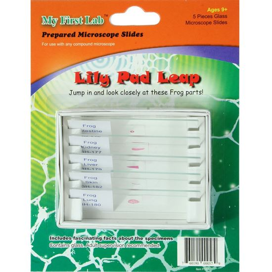 Picture of PS57 - Lily Pad Leap 5pc Slide Set