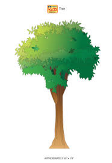 Picture of 03-CC - Tree Wall Sticker